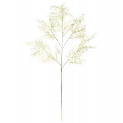 Rogue Acacia Foliage Spray White 110cm