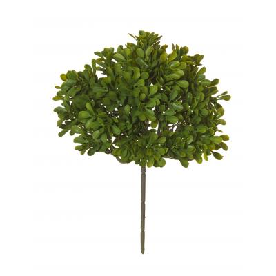 Rogue Boxwood Bush Green 26cm
