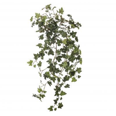 Mini English Ivy Hanging Bush Green 60cm