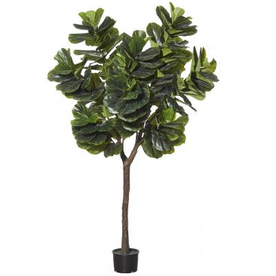 Rogue (RF) Giant Fiddle Tree Green 300cm
