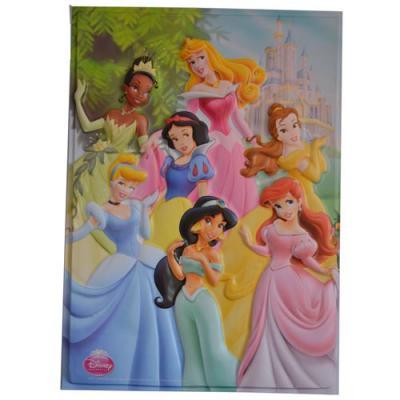 Disney Princess Wall Poster