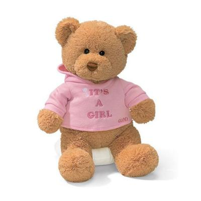 Gund 15418 Its A Girl Message Teddy Bear Stuffed Animal Plush